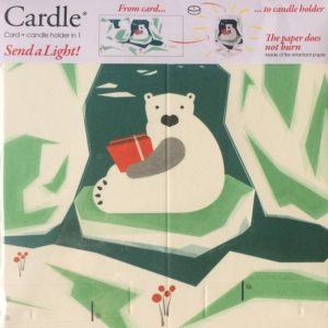 mayves-cardle-northern-lights-bear