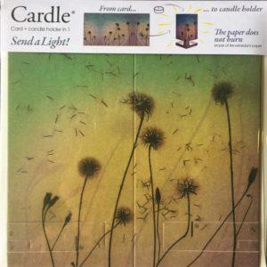 mayves-cardle-breezily-dusk