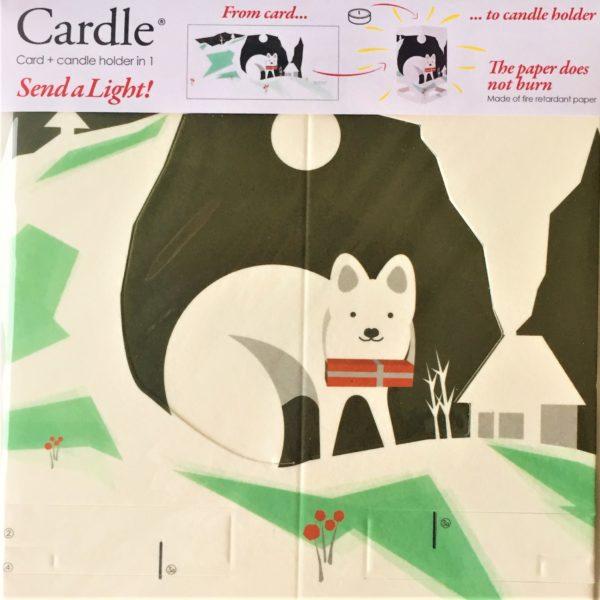 mayves-cardle-northern-lights-polar-fox