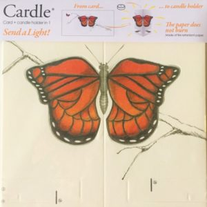 mayves-cardle-bright-butterfly-orange