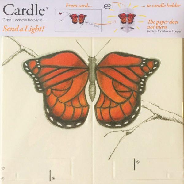 mayves-cardle-bright-butterfly-orange