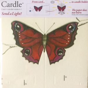 mayves-cardle-bright-butterfly-red