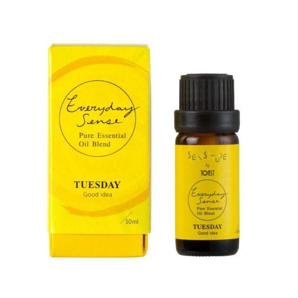 toast-everyday-sense-essential-oil-tuesday